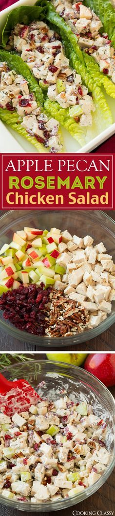 Apple Pecan Rosemary Greek Yogurt Chicken Salad - perfect in a sandwich or wrapped in lettuce! Healthy, easy, and totally delicious! Perfect fall lunch!