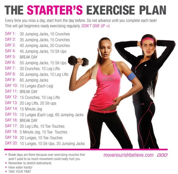 The Starter's Exercise Plan--build stamina and endurance. Create good lifestyle habits