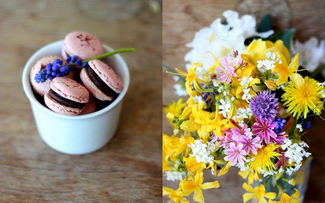 Mikyna v kuchyni: Malinové makronky s čokoládovou ganache aneb naše makronková premiéra