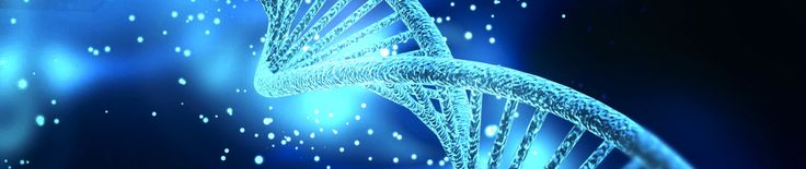 Cursuri ThetaHealing® în Arad   Bio Vivo Terapii
