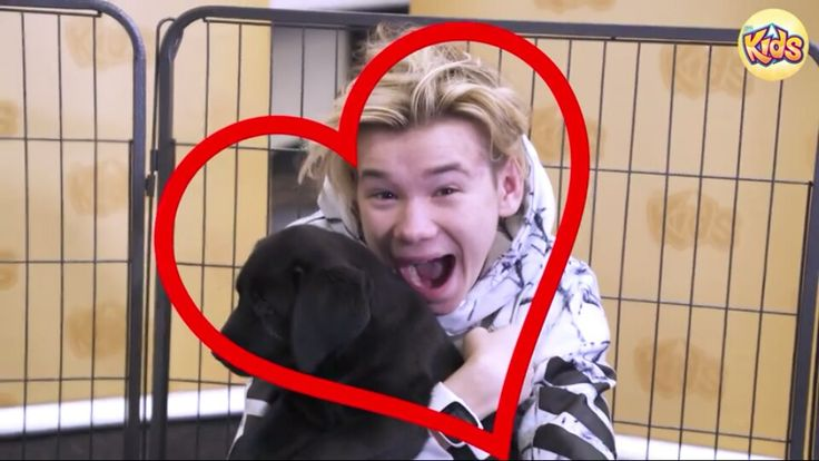 Martinus #martinus #aww #cute #dog