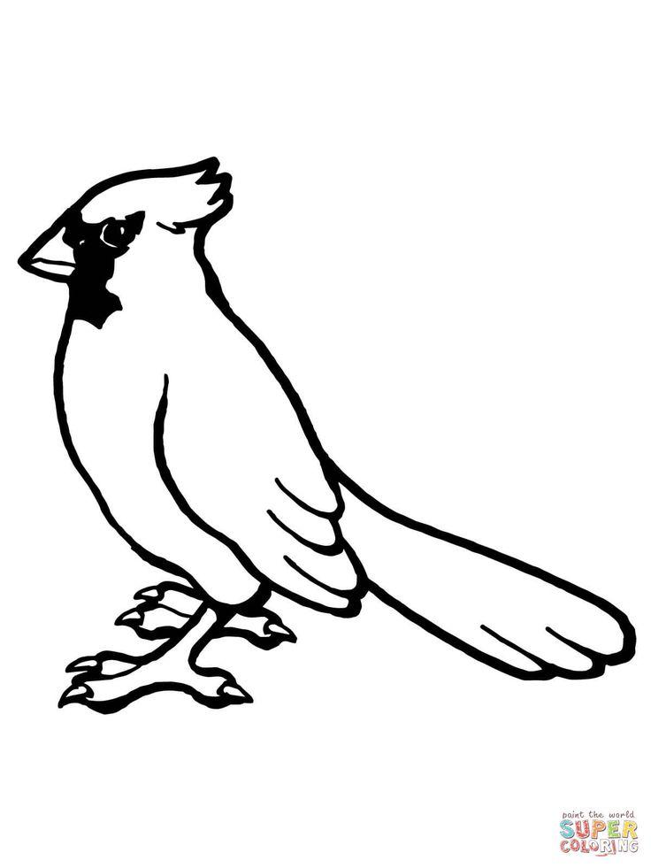 nothern cardinal bird super coloring