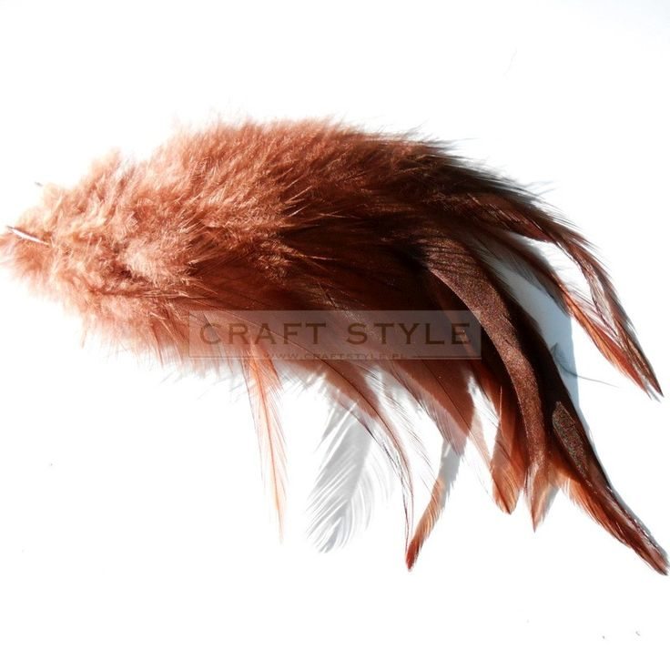 CELEBES pióra koguta 10-15 cm 10szt  BRĄZOWY