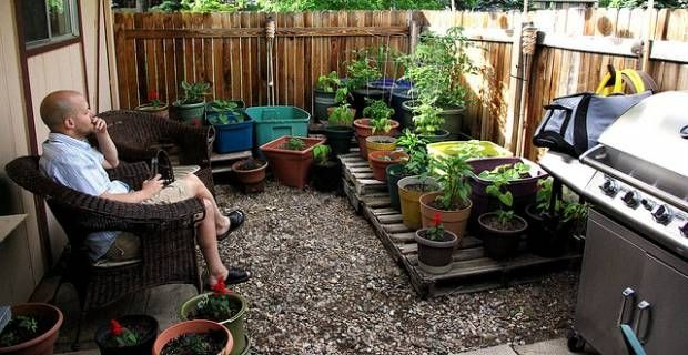 Creative budget savvy small garden design ideas the for Tiny garden ideas