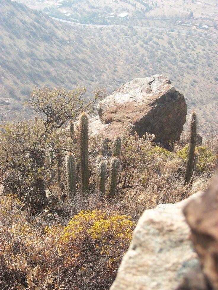 Ruta Catus y pedregales Lampa  Chicauma travels adventur