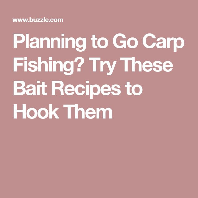 17 best fishing ideas images on pinterest fishing tips for Where to buy fish bait near me