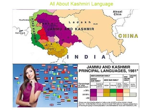 Language Translation Kashmiri to all International Language.