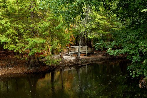Jeffries Creek Park - Florence South Carolina SC- This is where Carissa and I used to go to look at the Turtles while we were dating:)