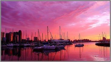 Avoca Special / Durban / Pp R1 297.00 / Valid till 31 October  https://www.facebook.com/photo.php?fbid=458353154253918=a.370442539711647.86796.369549089800992=1