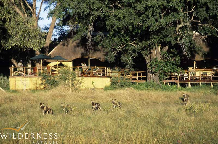 Humble beginnings – pristine wilderness areas. Click on the image for the full story.