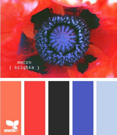 38 best beautiful color combinations images on pinterest
