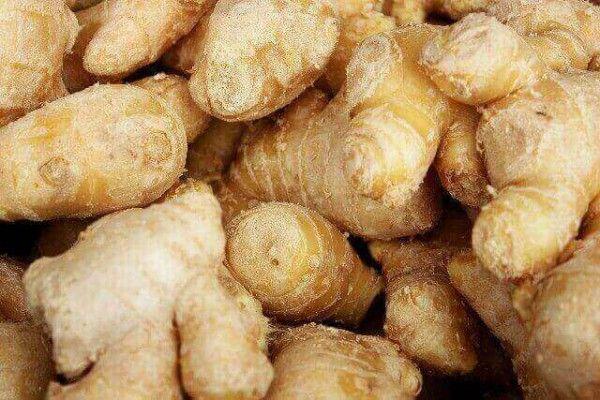 どうもラヴィです! 生姜というと薬味に欠かせない食材ですよね。 ピリッとした辛味が、料理を引き締めてくれます。 生姜は古くから世界のあちこちで 薬代わりに用いられていた食材。 日本でも中国から伝来し、 奈良時代には栽培がされていたそう。 そんな生姜の効能はとてもスゴイのです! よく冷え性に良いと聞きますよね。 それだけでなく、いろいろな効能があります。 今回は 生姜の効能、1日の摂取量、 逆に食べ過ぎるといけない理由などご紹介します!  生姜は温めるだけじゃない、スゴイ効能! スーパーでも手軽に購入でき、 麺類の薬味や煮物、炒め物 何でも生姜って合いますよね。 インドでは紀元前から薬として保存食に用いられ、 中国でも食用、漢方薬に使用され ヨーロッパでも生薬として利用されていました。 生姜といえば辛味がありますよね。 この辛味成分には主に3つに分かれています。 ジンゲロール・ショウガオール・ジンゲロンです。 この3つ成分がそれぞれ役割が違い 各々の効能がスゴイのです☆ ジンゲロール ジンゲロールはファイトケミカルの一種で 生の生姜の辛さの元となる成分。…