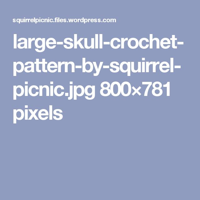 large-skull-crochet-pattern-by-squirrel-picnic.jpg 800×781 pixels