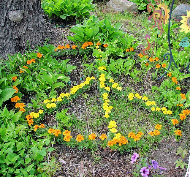 Peace in the garden. This is too cool not to re-pin.