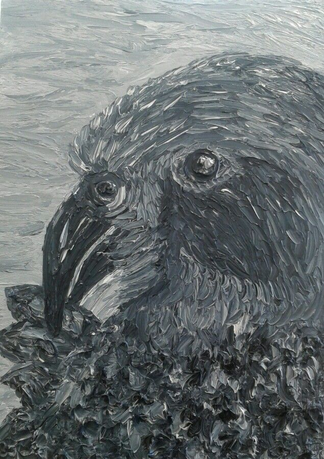 New Zealand Kea- Oil Painting