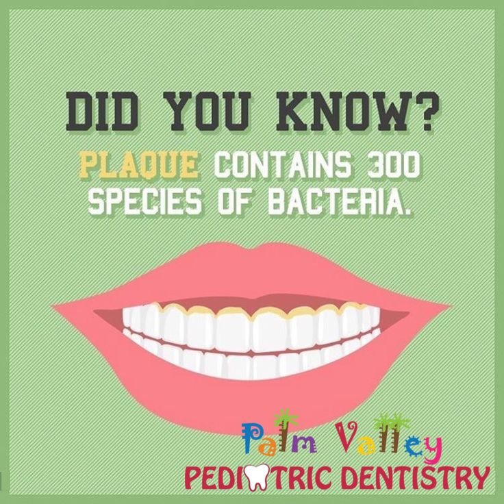 The mouth is colonized by 200300 bacterial species. Palm