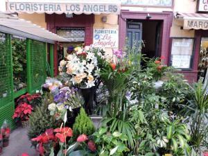 Floristeria Los Angeles en Sevilla, asociada a nuestra plataforma web www.flores.apanymantel.com y con entrega a domicilio en Sevilla.