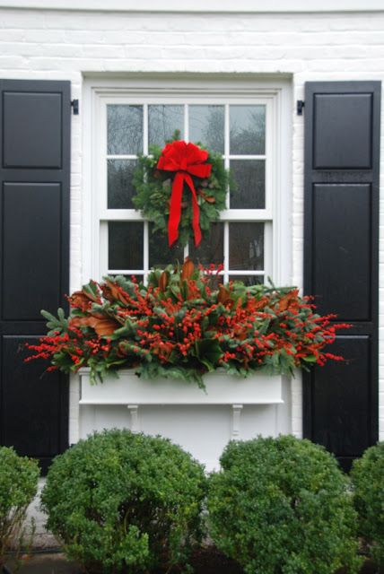perfect for the holidays in your window boxes - Berries & Magnolia Branches pretty pink tulips