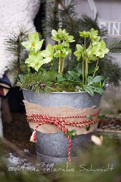Spring ... Galvanized bucket trimmed with burlap and filled with greenery and new spring bloomers