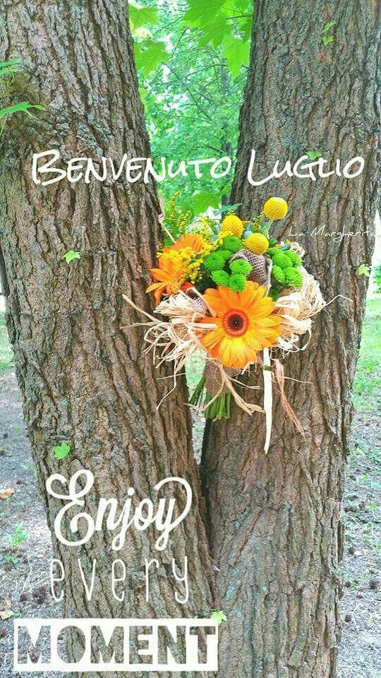 Benvenuto Luglio. La Margherita