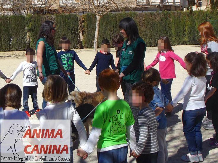 #actividadesasistidasconperros #actividadesdeocioeducativo colegio #ontinyent