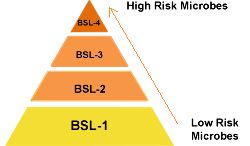 CDC quick learn tutorial on biosafety labs - Pyramid showing the four BSLs with the lowest risk microbes at the bottom, representing BSL-1, and the highest risk microbes at the top, rep...