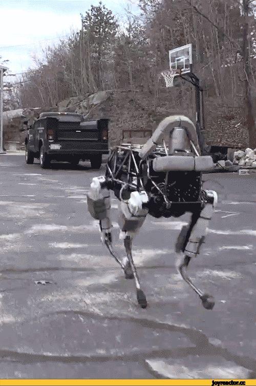 geek,Прикольные гаджеты. Научный, инженерный и айтишный юмор,лошадка,робот,слава роботам