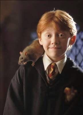 Ron Wemel is Harry Potter's beste vriend. Al  zijn broers gaan naar Zweinstein  en zijn vader werkt voor het Ministerie van Toverkunst. Hij is een beetje onhandig en vreemd soms.