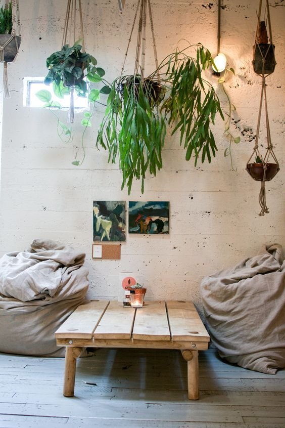 To fill blank space, suspend your plants in the air and hang them! Looks like its raining plants! <3: