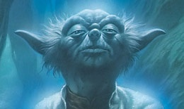 """Yoda has taught us to """"do or do not"""" and that """"there is no 'try'"""". We can learn a lot from this little green life form!"""