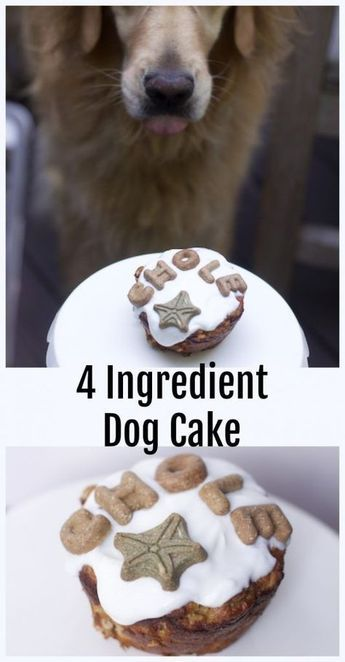 4 Ingredient Homemade Dog Cake Recipe Dog Stuff Dog