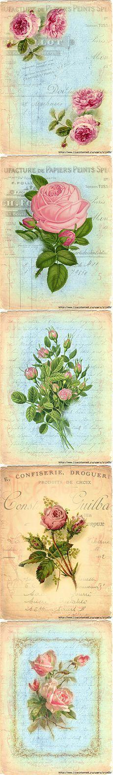 rosas carta postal frances Винтажные Цветы. 58