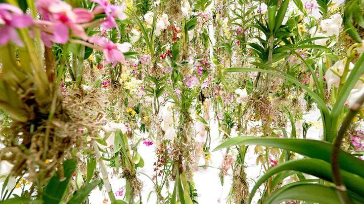 floating-flower-garden_by_teamlab_japan-3