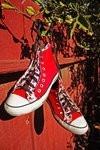 designer shoes photography