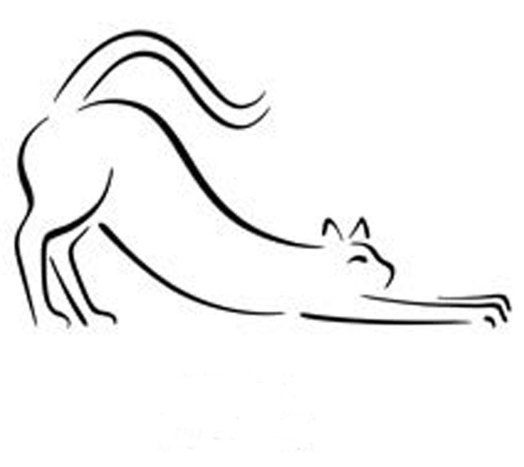 Pablo Picasso - The Cat