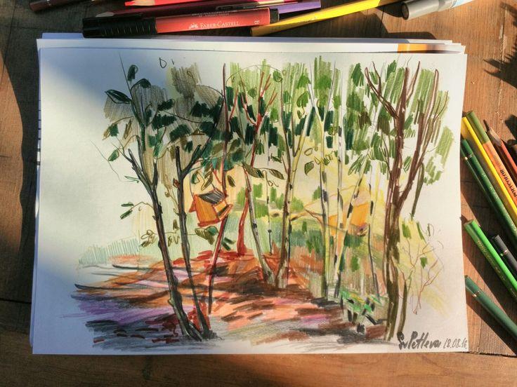 Sveta Petleva. Summer forest. Colored pencils. 2016