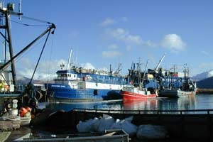 Discovery Star & Bering Star Processing Cod in Dutch Harbor
