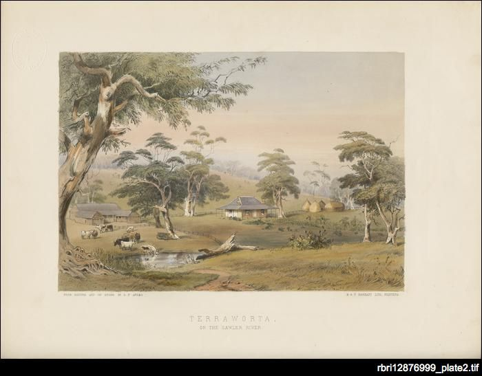 Terraworta, 1849 by George French Angas. Terraworta, on the Gawler River was the property of his brother, George Howard Angas who describes the locale as beautiful 'surrounded by a park-like country of rich grass, and the river Gawler flowing through it, undulating hills of good soil suited for sheep, and rich valleys that may be cultivated to produce any thing.