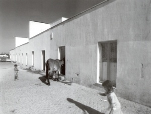 ÁLVARO SIZA . BAIRRO DA MALAGUEIRA . 1977