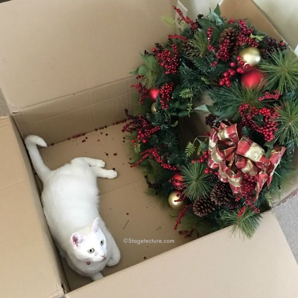 Images about wreaths for pet lovers on pinterest