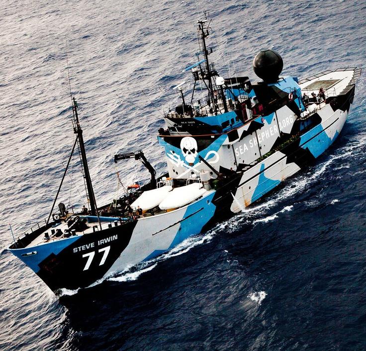 Whale Wars-Sea Shepherd