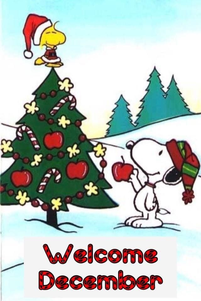 Pin By Lisa Peterson On Peanuts Winter Snoopy Christmas Snoopy Party Peanuts Christmas