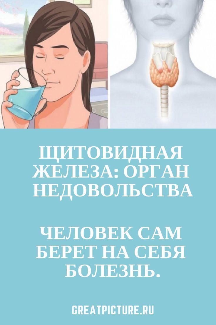 Щитовидная железа: Орган НЕДОВОЛЬСТВА – #жел…