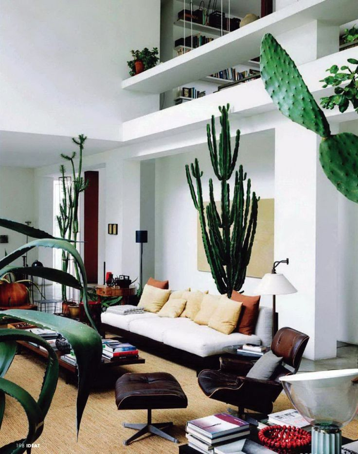 Zo cool een woonkamer met metershoge cactussen op
