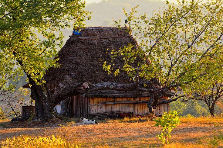 Casa ţărănească tradițională din Rosia   Bihor in imagini