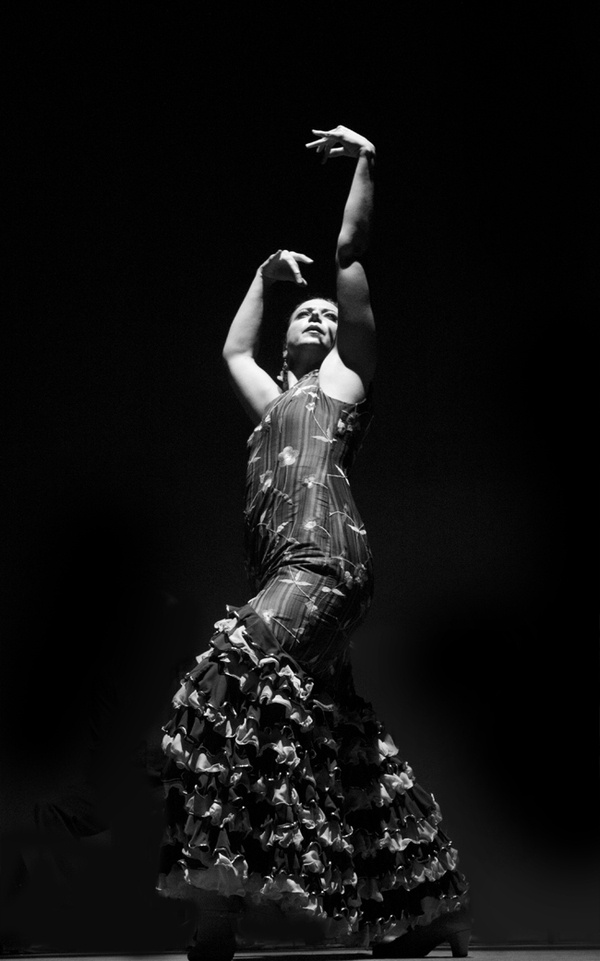 Flamenco by Leyda Luz, via Behance