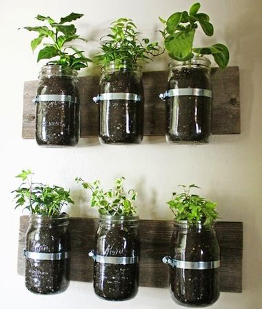 Garden All Year With These Amazing Indoor Planters! | The Stir