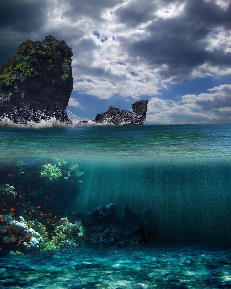 underwater paradise (1024×1280)