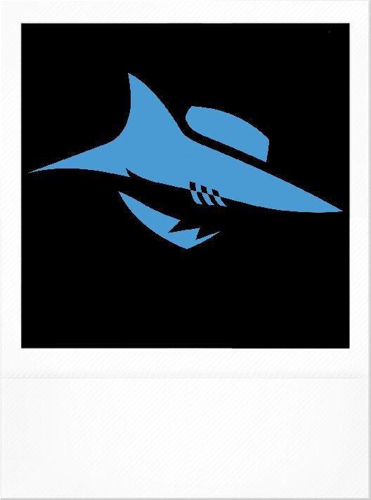 My team Cronulla Sharks