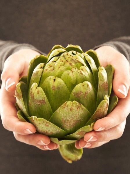 Abnehmen mit Artischocke – das geht tatsächlich! Artischockenextrakt lässt bei einer Diät die Kilos nur so purzeln. Doch das ist längst nicht alles: Die grüne Heilpflanze kann noch viel mehr.